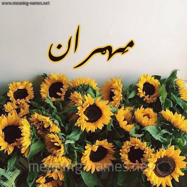 صورة اسم مَهْران Mahran شكل 17 صوره دوار الشمس للإسم بخط رقعة