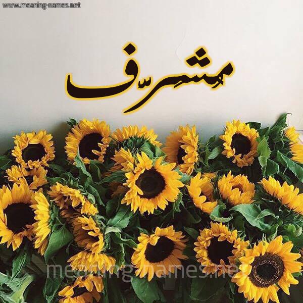 صورة اسم مُشَرَّف MOSHARAF شكل 17 صوره دوار الشمس للإسم بخط رقعة