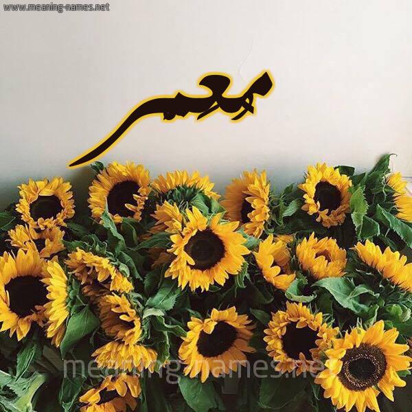صورة اسم مُعَمَّر Moamer شكل 17 صوره دوار الشمس للإسم بخط رقعة