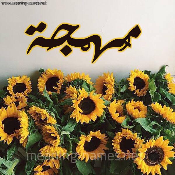 صورة اسم مُهْجَة MOHGAH شكل 17 صوره دوار الشمس للإسم بخط رقعة