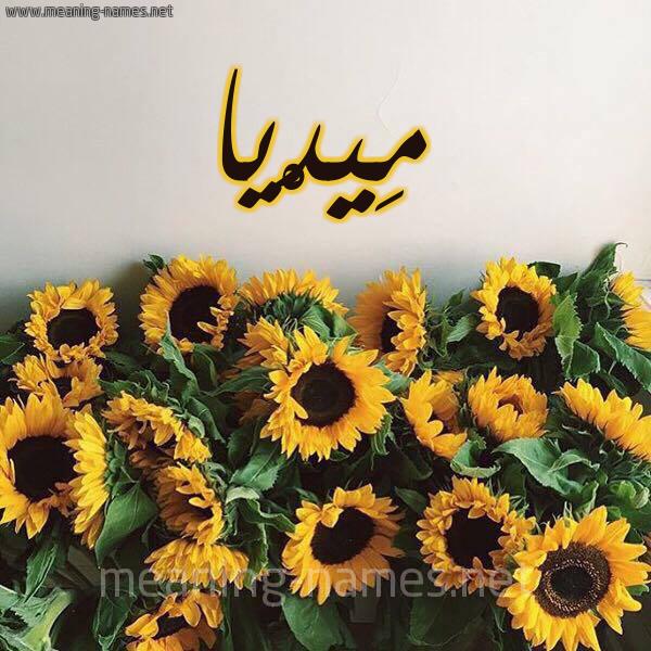 صورة اسم مِيدْيا Media شكل 17 صوره دوار الشمس للإسم بخط رقعة