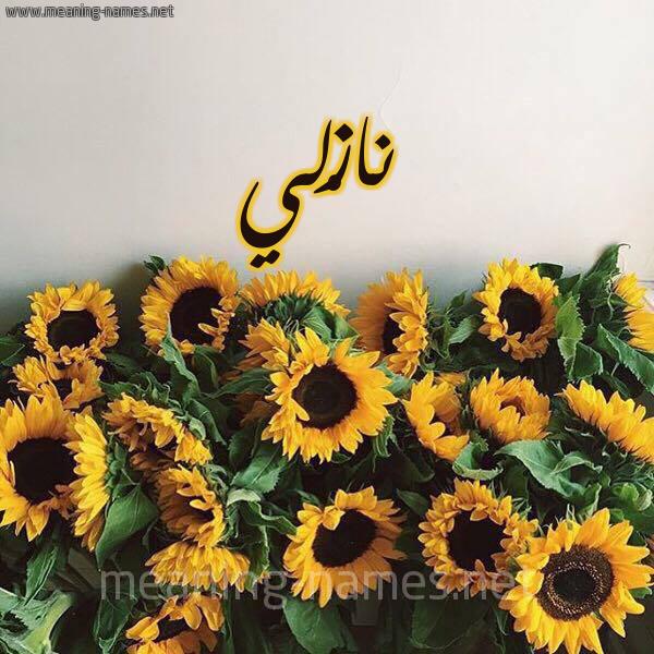 صورة اسم نازْلي Nazli شكل 17 صوره دوار الشمس للإسم بخط رقعة