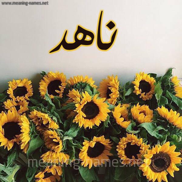 صورة اسم ناهد Nahd شكل 17 صوره دوار الشمس للإسم بخط رقعة