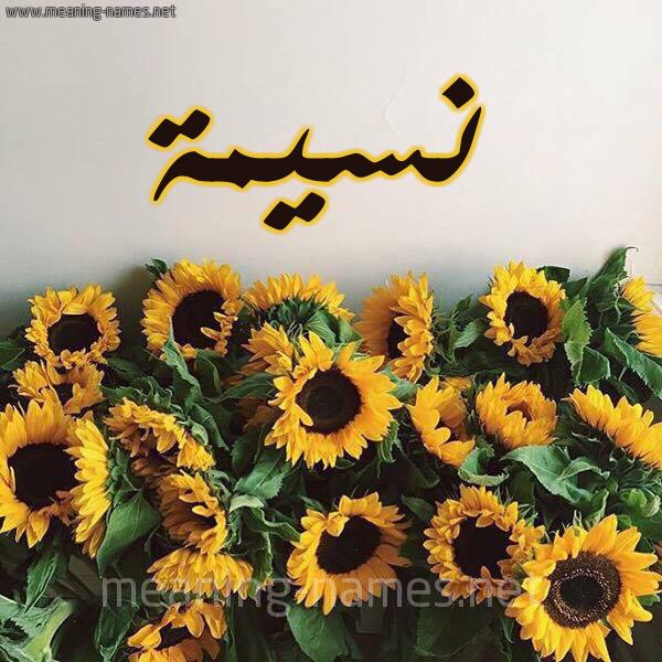 صورة اسم نسيمة Naseema شكل 17 صوره دوار الشمس للإسم بخط رقعة