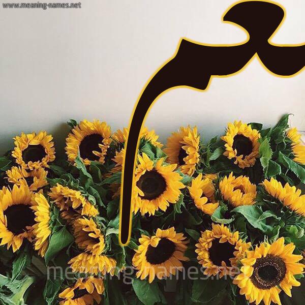 صورة اسم نغم Nagham شكل 17 صوره دوار الشمس للإسم بخط رقعة