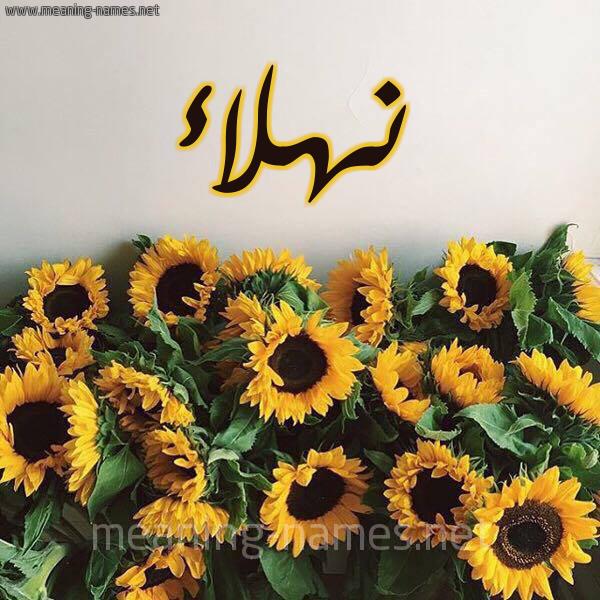 شكل 17 صوره دوار الشمس للإسم بخط رقعة صورة اسم نهلاء Nhla'a