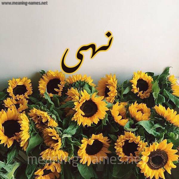 صورة اسم نهى Noha شكل 17 صوره دوار الشمس للإسم بخط رقعة