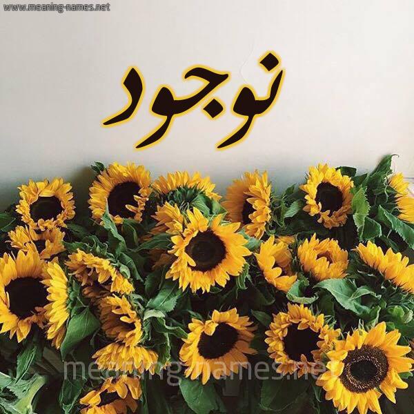 صورة اسم نوجود NOUJOUD شكل 17 صوره دوار الشمس للإسم بخط رقعة