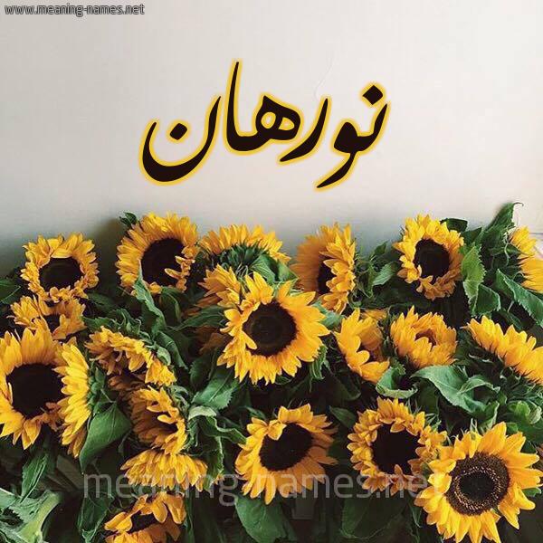 صورة اسم نورهان Norhan شكل 17 صوره دوار الشمس للإسم بخط رقعة