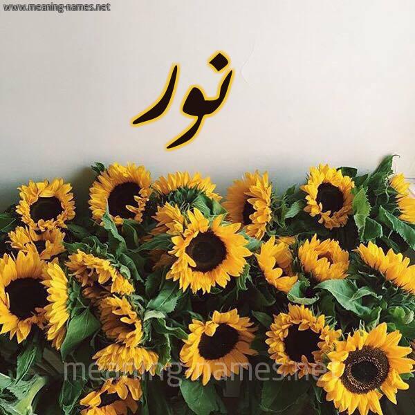 صورة اسم نور Noor شكل 17 صوره دوار الشمس للإسم بخط رقعة