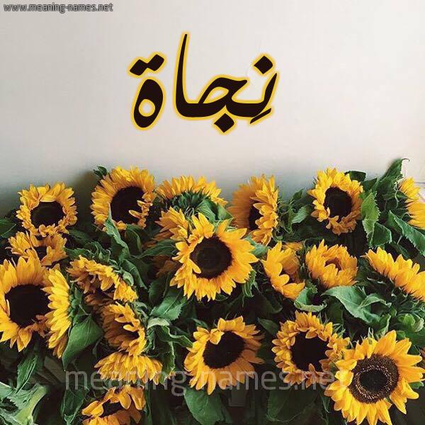 صورة اسم نَجاة NAGAH شكل 17 صوره دوار الشمس للإسم بخط رقعة