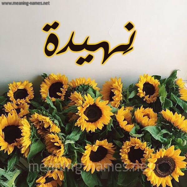 صورة اسم نَهيدة NAHIDH شكل 17 صوره دوار الشمس للإسم بخط رقعة