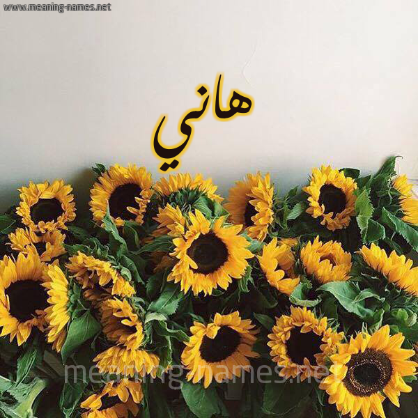 صورة اسم هاني Hani شكل 17 صوره دوار الشمس للإسم بخط رقعة