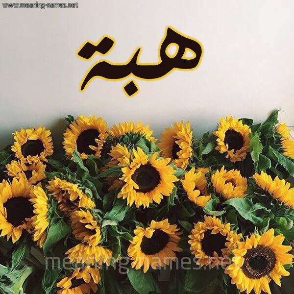 صورة اسم هبة Heba شكل 17 صوره دوار الشمس للإسم بخط رقعة