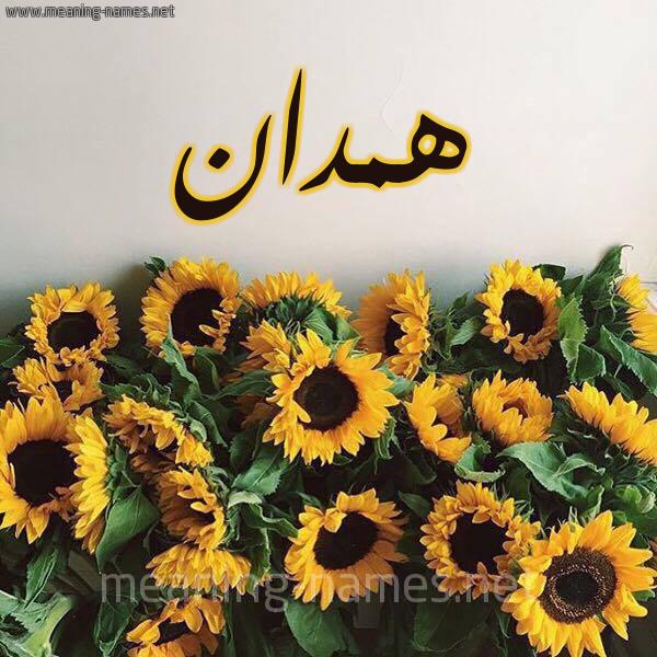 صورة اسم همدان HMDAN شكل 17 صوره دوار الشمس للإسم بخط رقعة