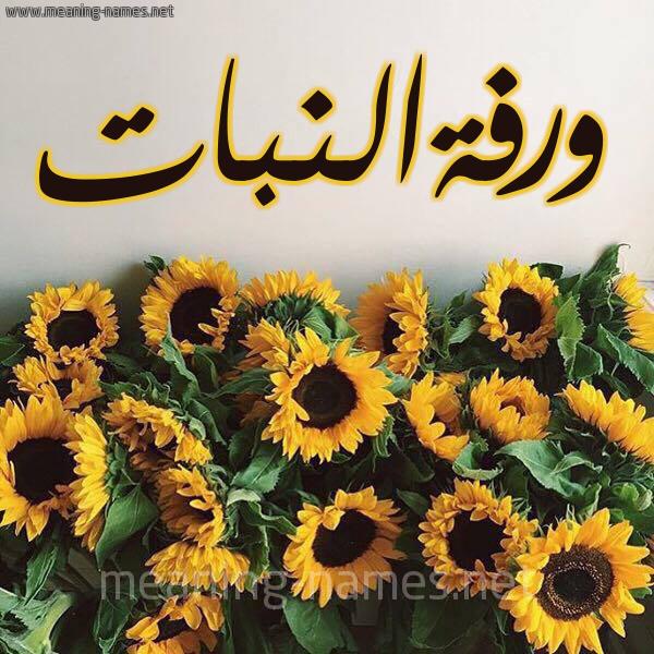 صورة اسم ورفةالنبات Wrfhalnbat شكل 17 صوره دوار الشمس للإسم بخط رقعة