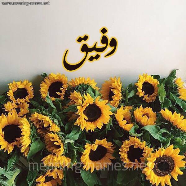 صورة اسم وفيق Wfyq شكل 17 صوره دوار الشمس للإسم بخط رقعة