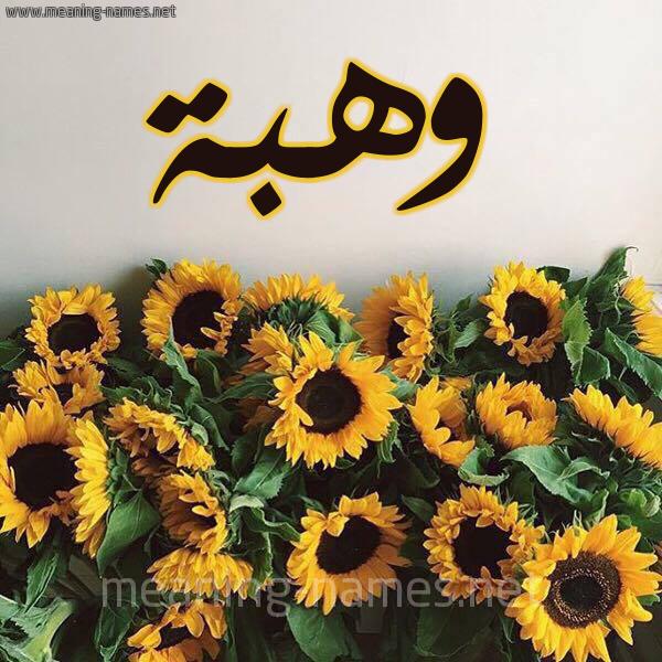 صورة اسم وهبة Wahba شكل 17 صوره دوار الشمس للإسم بخط رقعة