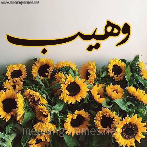 صورة اسم وهيب Waheeb شكل 17 صوره دوار الشمس للإسم بخط رقعة