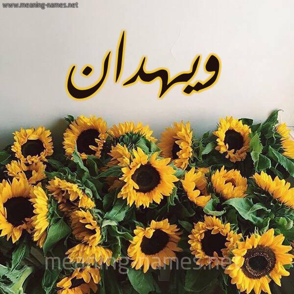 صورة اسم ويهدان Wahdan شكل 17 صوره دوار الشمس للإسم بخط رقعة