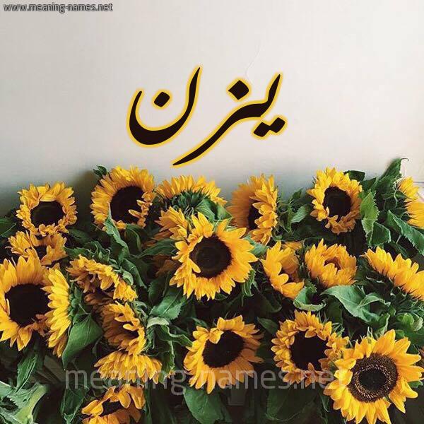شكل 17 صوره دوار الشمس للإسم بخط رقعة صورة اسم يزن Yazn