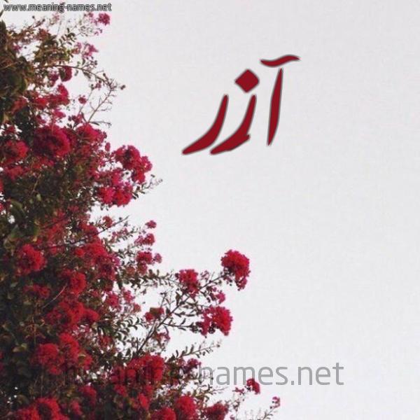 معنى اسم آزَر AZAR | قاموس الأسماء و المعاني