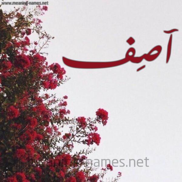 صورة اسم آصِف Asef شكل 18 صوره الورد الأحمر للإسم بخط رقعة