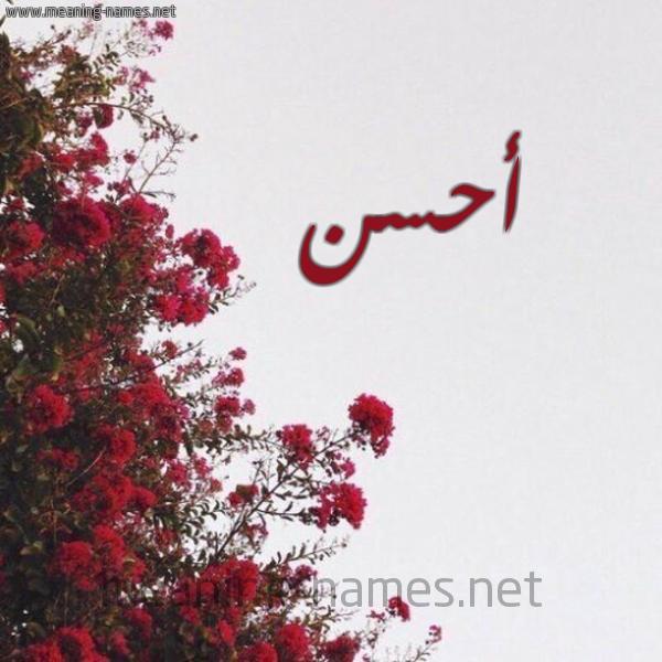 شكل 18 صوره الورد الأحمر للإسم بخط رقعة صورة اسم أحسن AHSN
