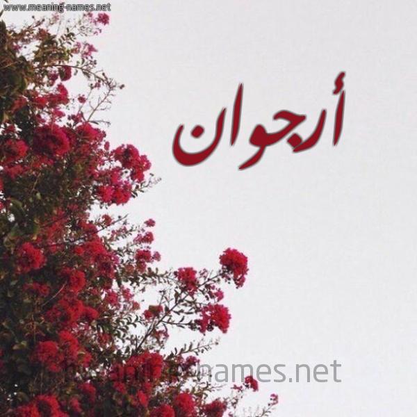 صورة اسم أرجوان Argoan شكل 18 صوره الورد الأحمر للإسم بخط رقعة