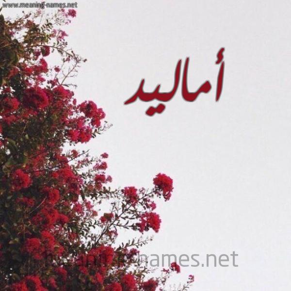 صورة اسم أماليد Amalid شكل 18 صوره الورد الأحمر للإسم بخط رقعة