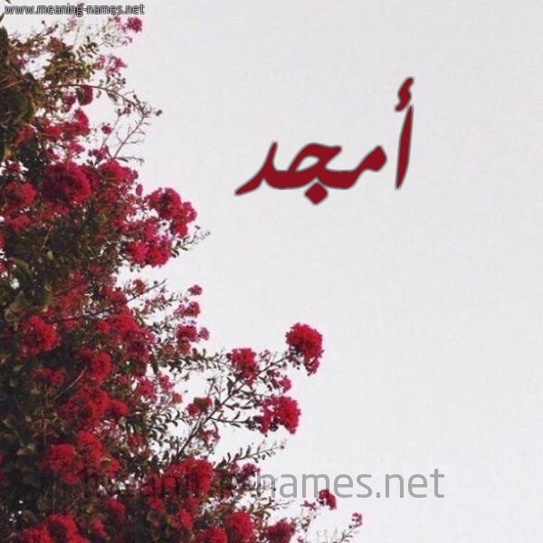 صورة اسم أمجد Amgd شكل 18 صوره الورد الأحمر للإسم بخط رقعة