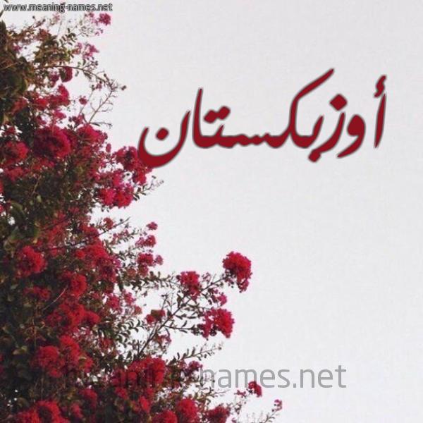 صورة اسم أوزبكستان AOZBKSTAN شكل 18 صوره الورد الأحمر للإسم بخط رقعة