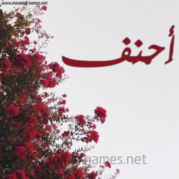 صورة اسم أَحْنَف AAHNAF شكل 18 صوره الورد الأحمر للإسم بخط رقعة