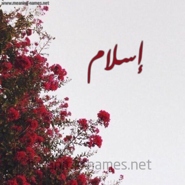 صورة اسم إسلام Eslam شكل 18 صوره الورد الأحمر للإسم بخط رقعة