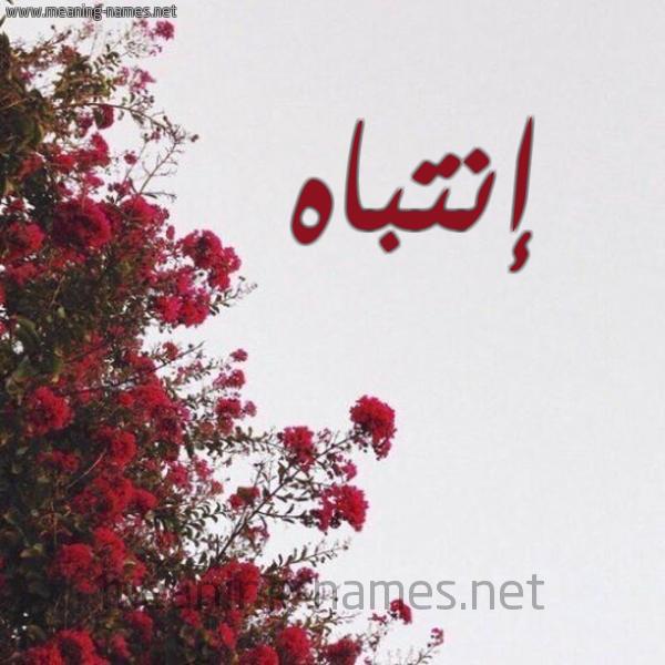 صورة اسم إنتباه ENTBAH شكل 18 صوره الورد الأحمر للإسم بخط رقعة