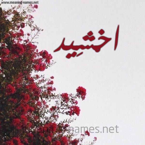شكل 18 صوره الورد الأحمر للإسم بخط رقعة صورة اسم اخْشِيد AKHSHEID
