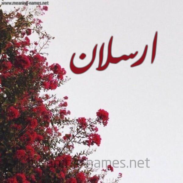 صورة اسم ارسلان Arslan شكل 18 صوره الورد الأحمر للإسم بخط رقعة
