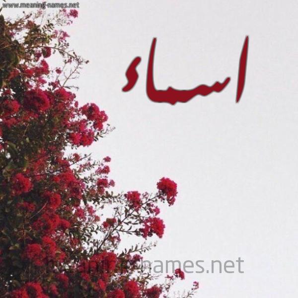 اسماء شكل 18 صوره الورد الأحمر للإسم بخط رقعة كتابة على الورد 2021