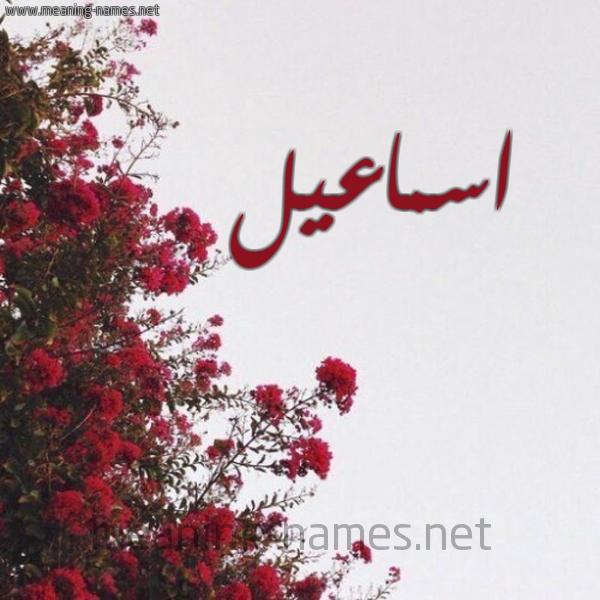 صورة اسم اسماعيل Ismail شكل 18 صوره الورد الأحمر للإسم بخط رقعة
