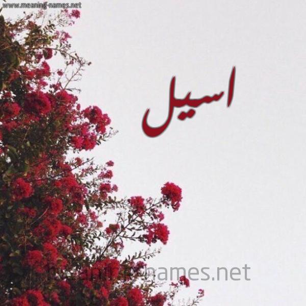 شكل 18 صوره الورد الأحمر للإسم بخط رقعة صورة اسم اسيل Aseel