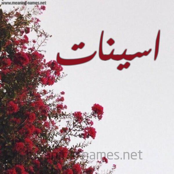 صورة اسم اسينات Aseynat شكل 18 صوره الورد الأحمر للإسم بخط رقعة