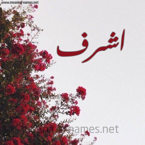 شكل 18 صوره الورد الأحمر للإسم بخط رقعة صورة اسم اشرف Ashrf