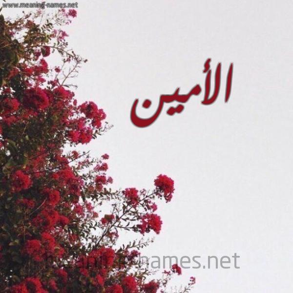 صورة اسم الأمين AL-AMIN شكل 18 صوره الورد الأحمر للإسم بخط رقعة
