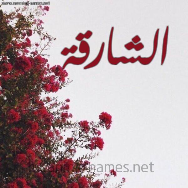 صورة اسم الشارقة ALSHARQH شكل 18 صوره الورد الأحمر للإسم بخط رقعة