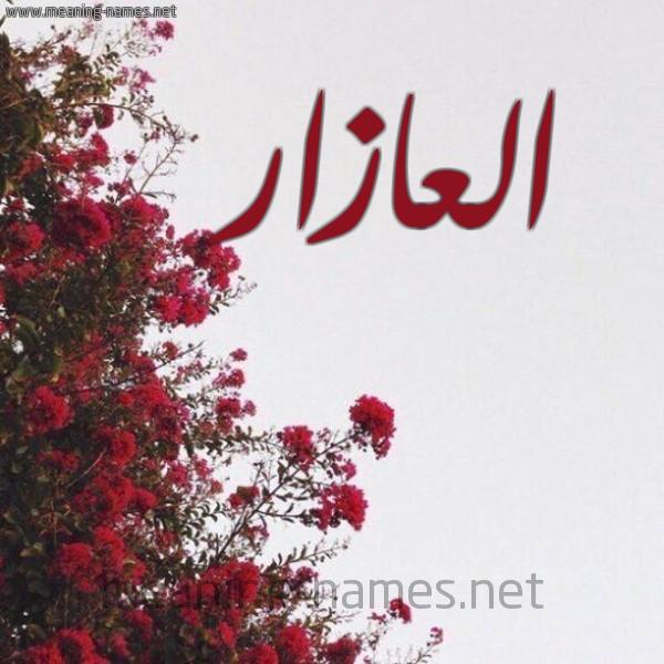شكل 18 صوره الورد الأحمر للإسم بخط رقعة صورة اسم العازار ALAAZAR