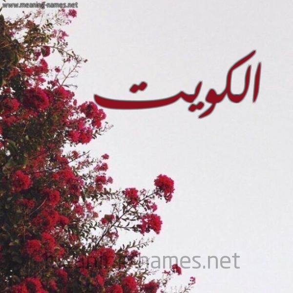 صورة اسم الكويت Kuwait شكل 18 صوره الورد الأحمر للإسم بخط رقعة