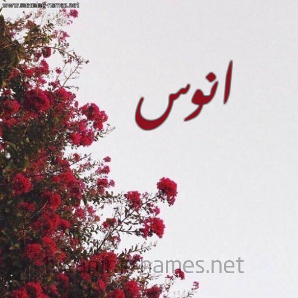 شكل 18 صوره الورد الأحمر للإسم بخط رقعة صورة اسم انوس ANOS