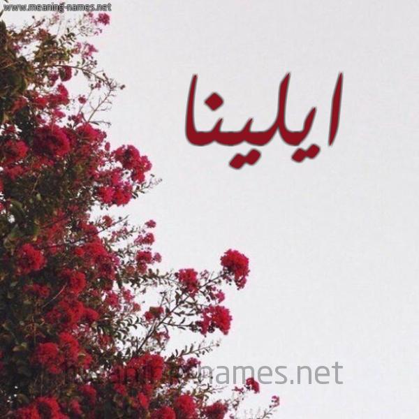 صورة اسم ايلينا elena شكل 18 صوره الورد الأحمر للإسم بخط رقعة
