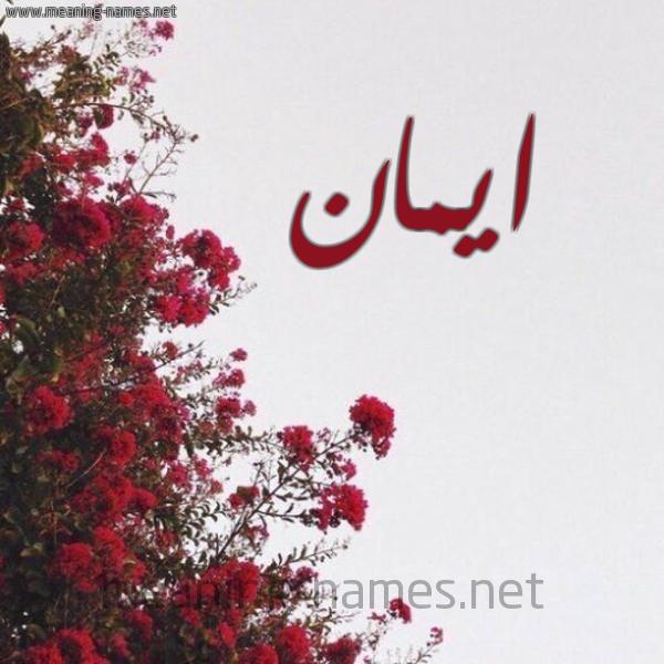 صورة اسم ايمان Eman شكل 18 صوره الورد الأحمر للإسم بخط رقعة