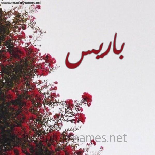 صورة اسم باريس Paris شكل 18 صوره الورد الأحمر للإسم بخط رقعة